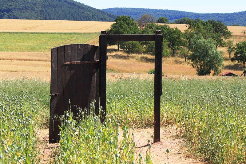 offene Tür im Feld