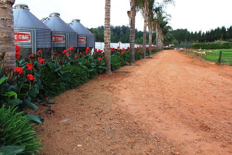 Farm, Zäune zur Sicherheit