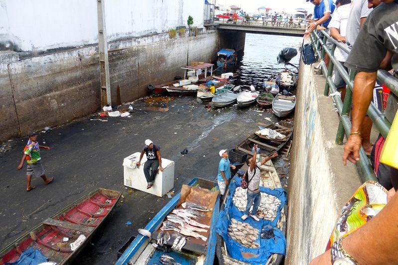 Fischmarkt Manaus