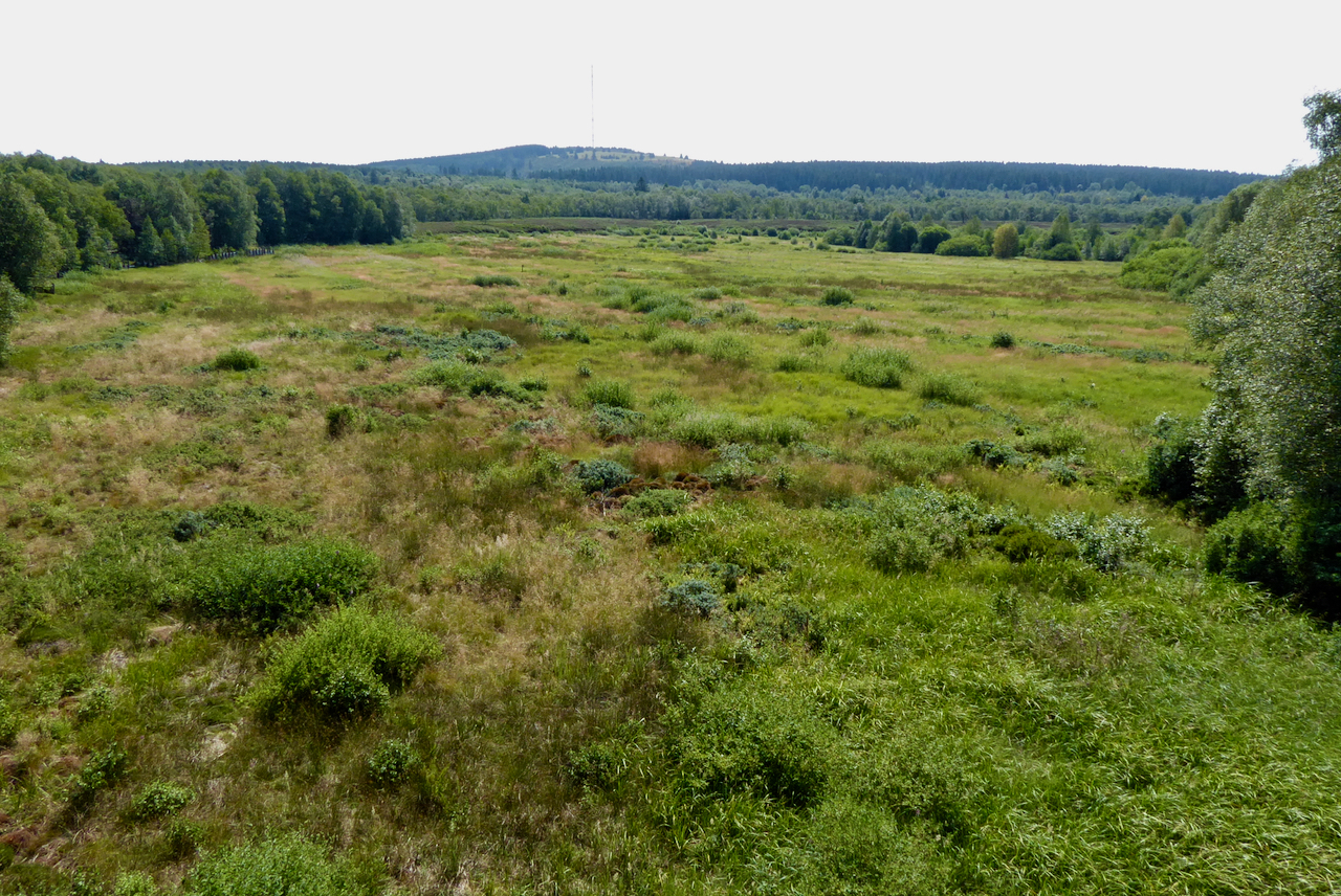 Rotes Moor, Hessische Rhön