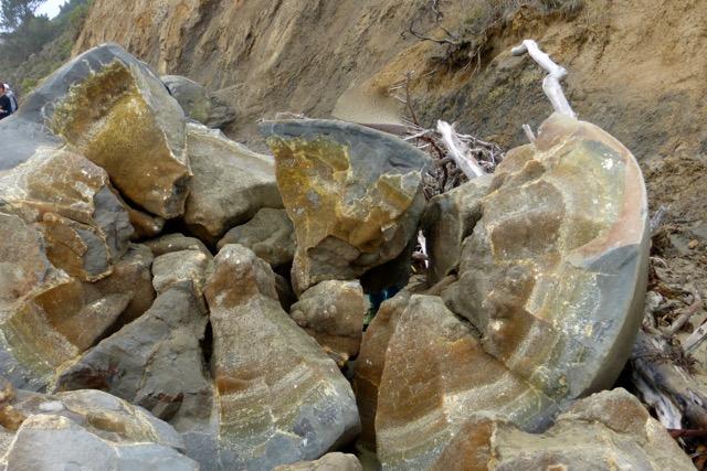 Moeraki-Boulders in Neuseeland