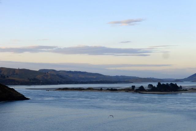 Otago Halbinsel, Taiaroa Head